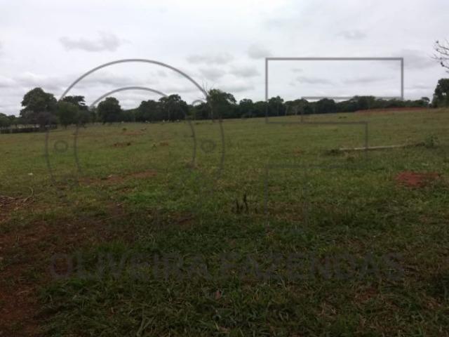 125 hectares Aquidauana MS - Foto 4