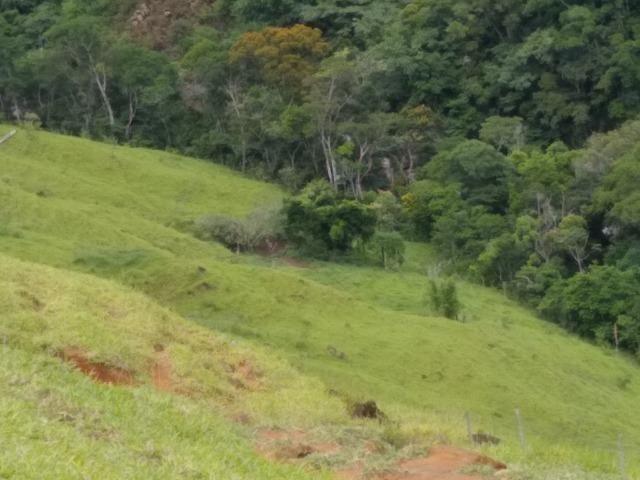 Fazenda de 150 alqueires ou seja 7.200.000 m² em Casimiro de Abreu, RJ - Foto 19