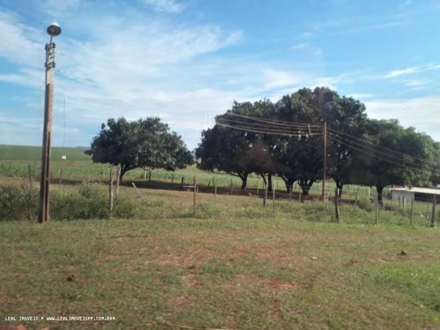 Fazenda para venda em estrela do norte, zona rural, 3 dormitórios, 1 suíte, 1 banheiro - Foto 5