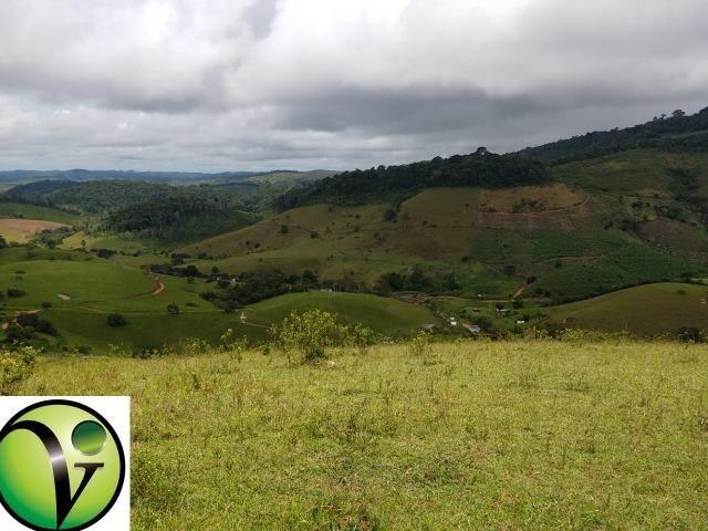 Temos Sua Fazenda de 65 hectares a 1.200 Hectares na Região de Pernambuco/PE - Foto 14