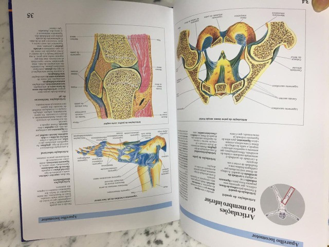 Atlas de anatomia e saúde. Atualizado nova Nomenclatura Edição original. C. Frio - Foto 4