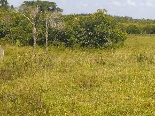 Velleda oferece sitio 3 hectares com casa e 2 açudes - Foto 7