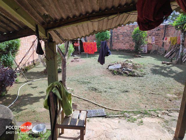 Roça Quintal mantenha limpo para evitar doença - Foto 4