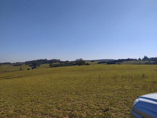 Velleda oferece linda fazenda 70 hectares 10 km da RS-040, aproveita 100% - Foto 6