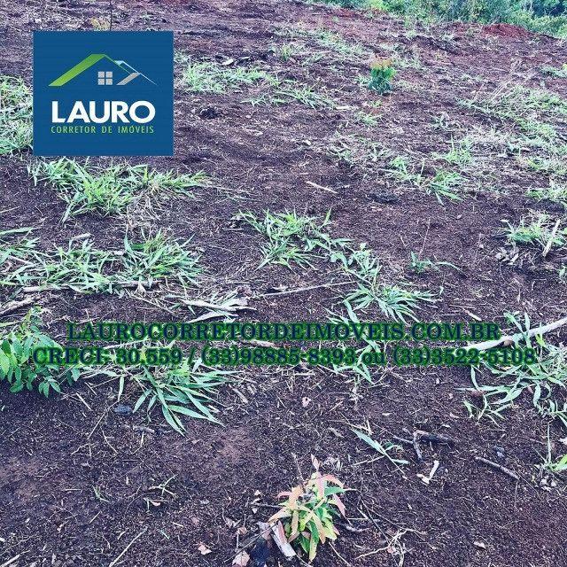 Fazenda com 70,6640 hectares (14,6 alqueires) a 11 km de Teófilo Otoni - Foto 20