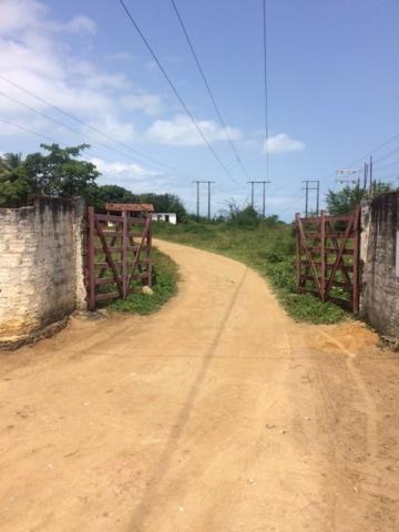 Ótimo Sítio 1,6 Hectares na Área Rural de Olinda, Aceito Automóvel ou imóvel
