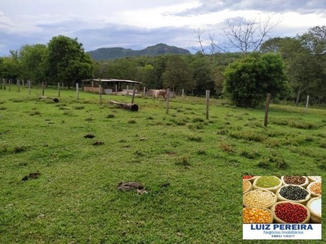 FAZENDA A VENDA EM SÃO GABRIEL DO OESTE - MS - (Pecuária)