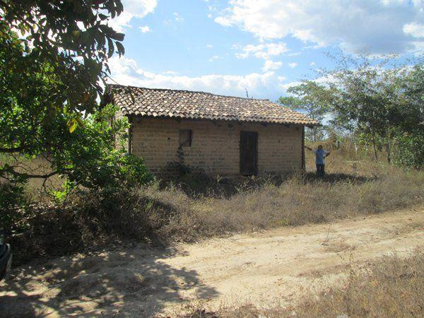 Fazenda Ponte Alta - TO - Foto 5