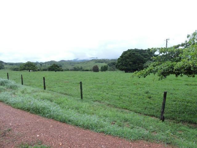 Fazenda 80 Alqueires Municipio Vila Propricio - Foto 5