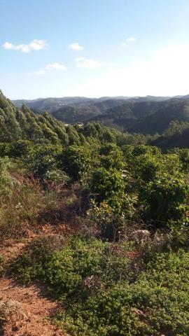 Oportunidade - Terreno aprox. 10.000 m² em Santa Maria de Jetibá