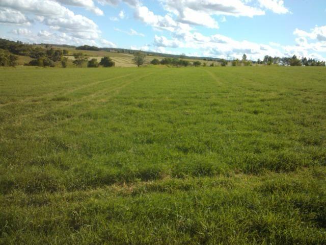 Fazenda 33 Alqueires, Região de Tatuí-Sp, Ideal P/ Haras - Foto 5
