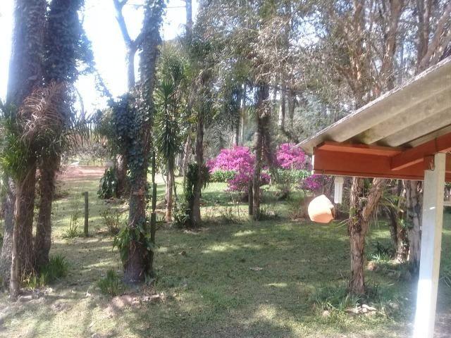 Linda Chácara 18.000 m² Doce Fino Quitandinha - Foto 12
