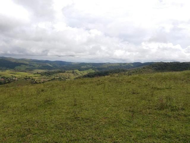 Temos Sua Fazenda de 65 hectares a 1.200 Hectares na Região de Pernambuco/PE - Foto 3