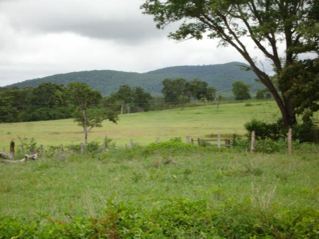 Fazenda em Poconé Cangas próximo á usina com 151 hectares