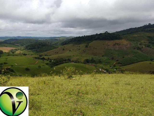 Temos Sua Fazenda de 65 hectares a 1.200 Hectares na Região de Pernambuco/PE - Foto 15