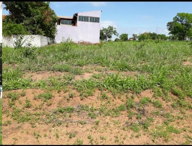 Lote Arara Vermelha Aparecida Taboado Ms, para Rancho** área de camping e piscina - Foto 10
