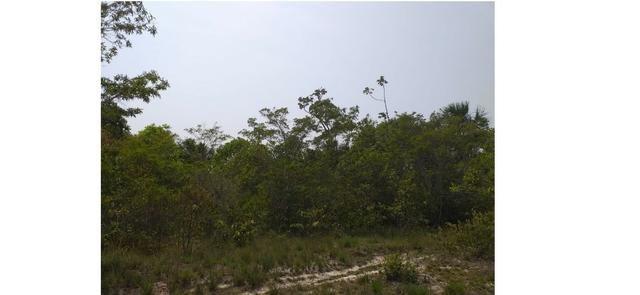 20,00 hectares, Nortelândia-MT, Pecuária, aceito parte em carro - Foto 2