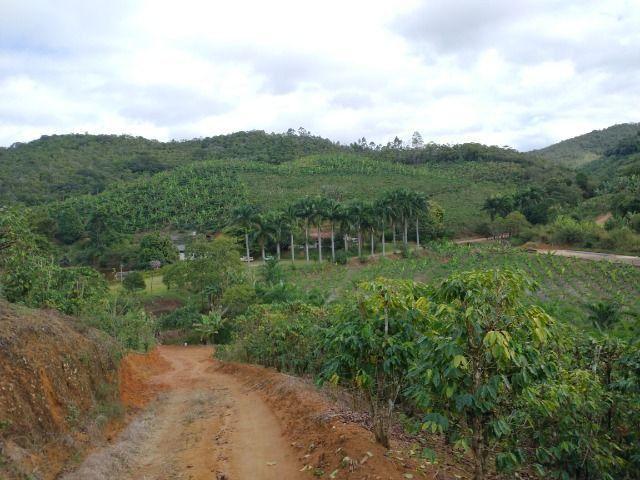 Propriedade 10 alqueires Araguaia - Foto 6