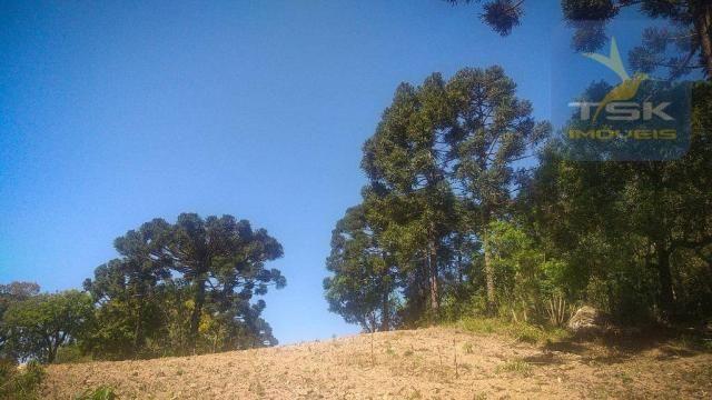 CH0407 - Chácara à venda, 2,5 Alqueires por R$ 195.000 - Zona Rural - Quitandinha/PR - Foto 3