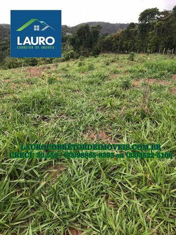 Fazenda com 70,6640 hectares (14,6 alqueires) a 11 km de Teófilo Otoni - Foto 3