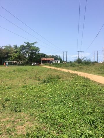 Ótimo Sítio 1,6 Hectares na Área Rural de Olinda, Aceito Automóvel ou imóvel - Foto 3