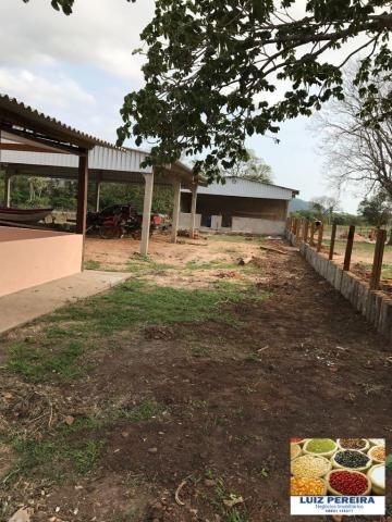 FAZENDA A VENDA EM CORUMBÁ - MS - DE 5435 HECTARES (Pecuária) - Foto 15