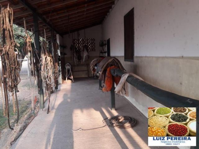 FAZENDA À VENDA EM PANTANAL NHECOLÂNDIA - MS - (Pecuária) - Foto 10