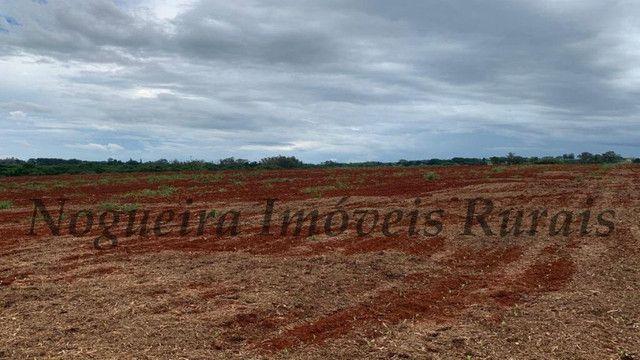 Sítio com 145.200 m², frente com a Castelo Branco, oportunidade (Nogueira Imóveis Rurais) - Foto 2
