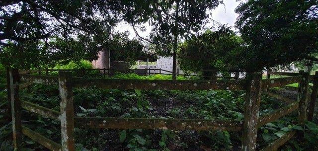 Chácara com 7 Hectares de Área em Aldeia - Foto 13