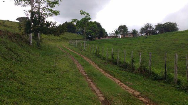Fazenda Ilhéus Bahia/ Sul da Bahia - Foto 11