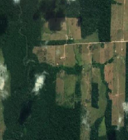 Excelente área - múltiplas possibilidades em Alta Floresta/MT