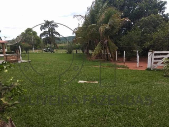 125 hectares Aquidauana MS - Foto 2