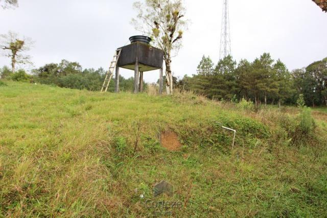 Chácara no Barro Branco em São José dos Pinhais - Foto 4