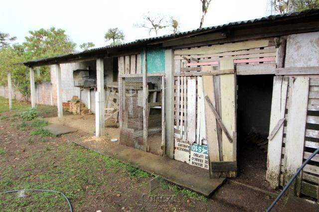 Chácara no Barro Branco em São José dos Pinhais - Foto 13