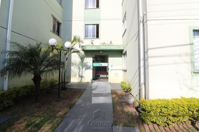 Apartamento 2 Quartos á venda no Sítio Cercado - Foto 7