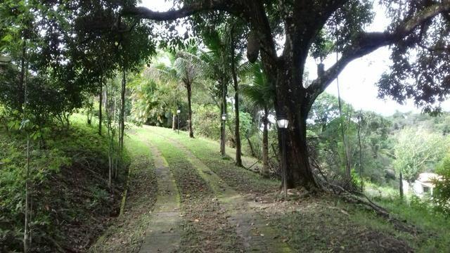 Alugo sitio em agro brasil - Foto 6
