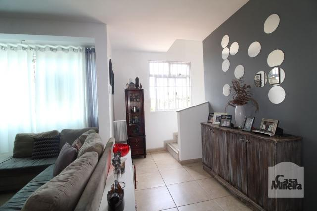 Apartamento à venda com 4 dormitórios em Calafate, Belo horizonte cod:240539 - Foto 3
