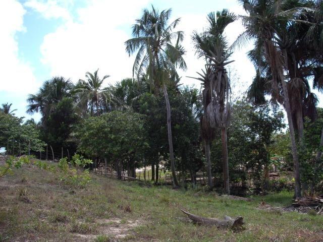 Casa de praia em Ilha Grande do Piauí próximo da praia Pedra do Sal - Foto 5