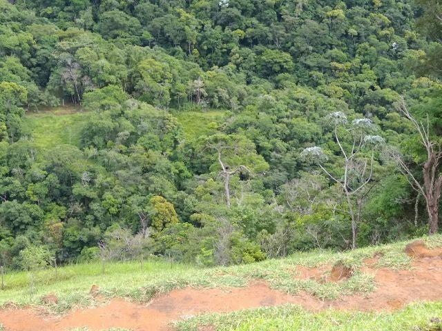 Fazenda de 150 alqueires ou seja 7.200.000 m² em Casimiro de Abreu, RJ - Foto 20