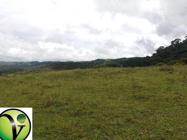 Temos Sua Fazenda de 65 hectares a 1.200 Hectares na Região de Pernambuco/PE - Foto 16
