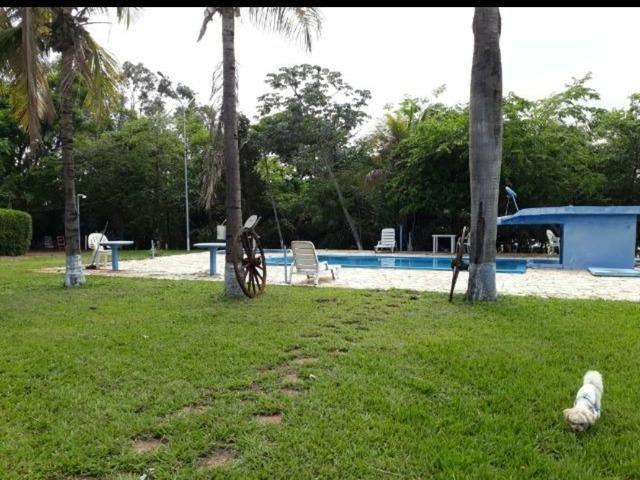 Lote Arara Vermelha Aparecida Taboado Ms, para Rancho** área de camping e piscina - Foto 5