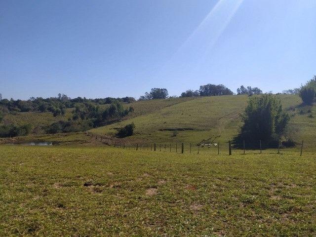 Velleda oferece linda fazenda 70 hectares 10 km da RS-040, aproveita 100%