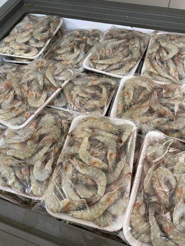 Camarão e frutos do mar - Foto 3