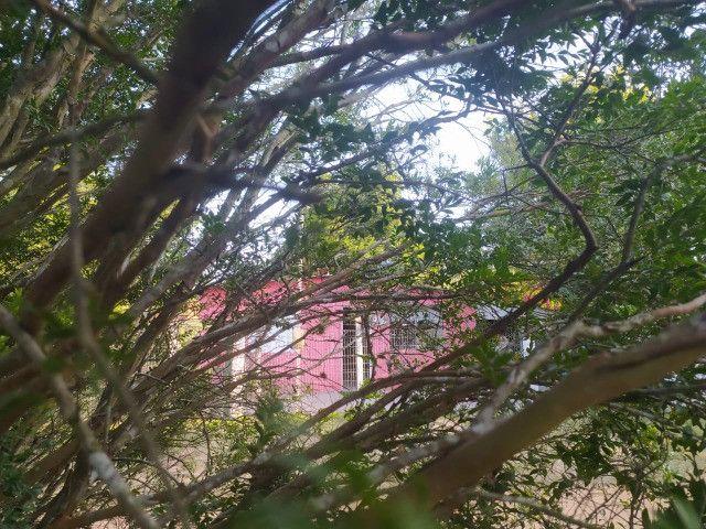 Velleda oferece lindo e aconchegante sitio em condominio - Foto 10
