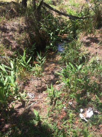 Sítio à venda em Zona rural, Cajuru cod:V14948 - Foto 7