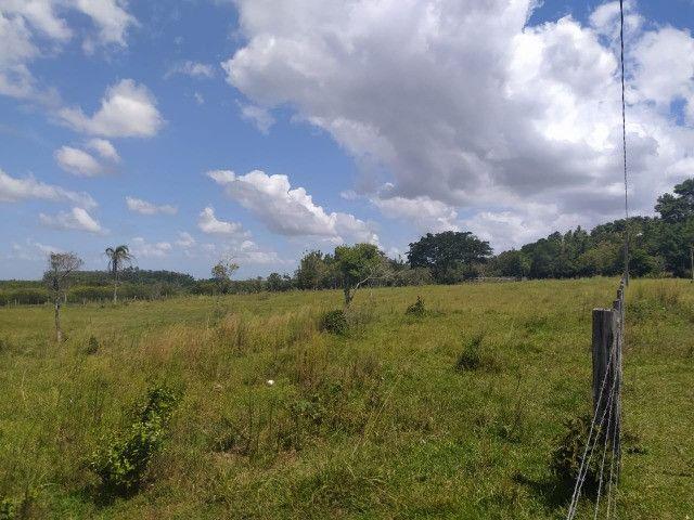 Velleda oferece sitio 3 hectares com casa e 2 açudes - Foto 3