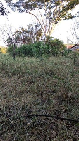 Terreno 3.000m²  Araçatuba SP. - Foto 2