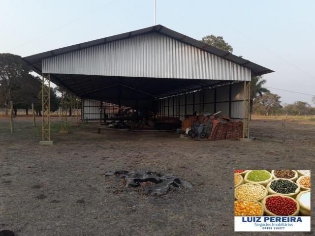 FAZENDA À VENDA EM PANTANAL NHECOLÂNDIA - MS - (Pecuária) - Foto 15
