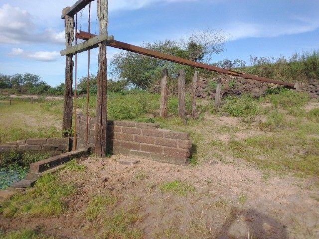 Vendo 40 hectares - Foto 3