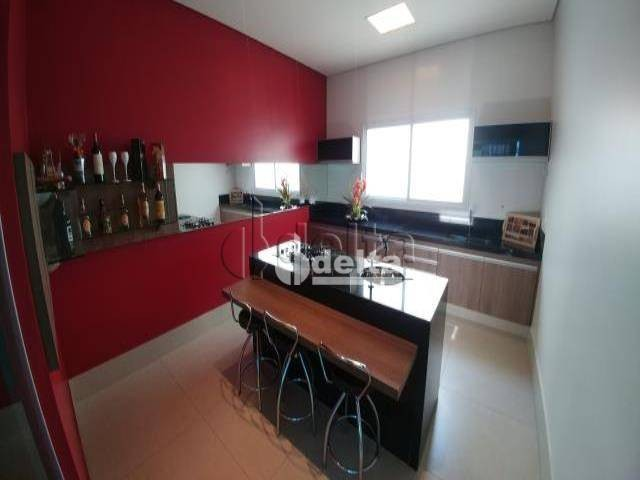 Casa com 6 dormitórios à venda, 480 m² por R$ 1.700.000,00 - Jardim América II - Uberlândi - Foto 18